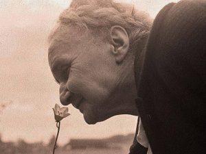 حس بویایی در سالمندان